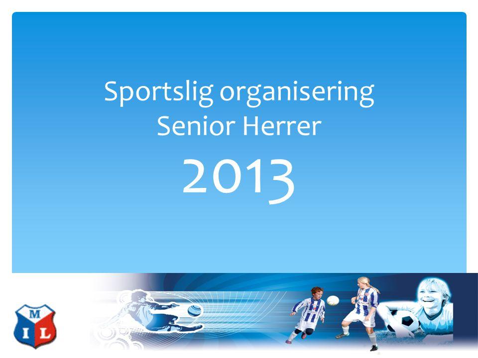 Sportslig organisering Senior Herrer 2013