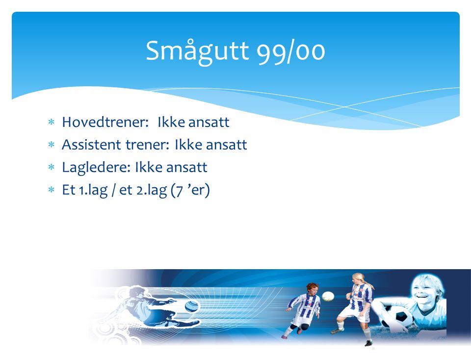 Organisering – Senior gruppen Sportslig Leder Arne Solli Trenings gruppe 1 Trenings gruppe 2 GuttSmågutt