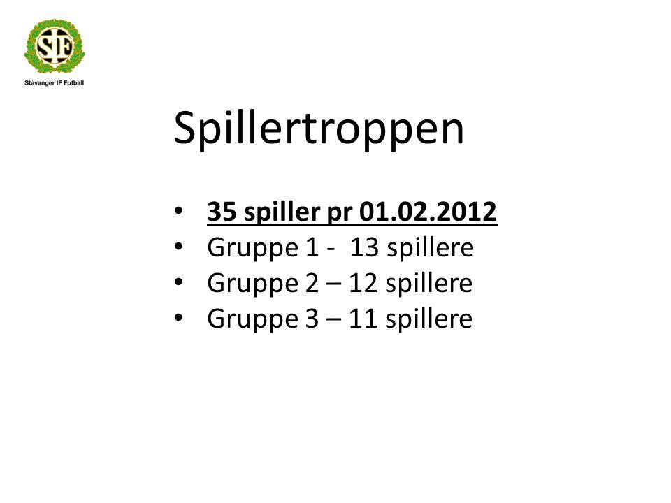 Spillertroppen 35 spiller pr 01.02.2012 Gruppe 1 - 13 spillere Gruppe 2 – 12 spillere Gruppe 3 – 11 spillere