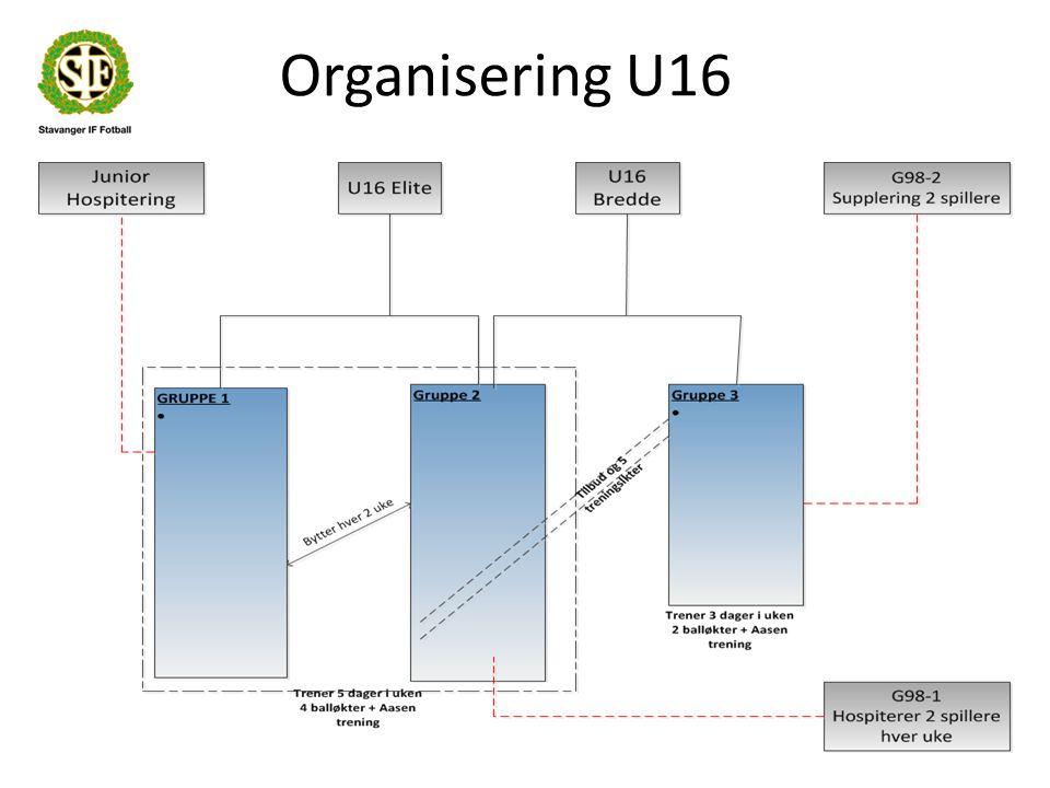 Organisering U16