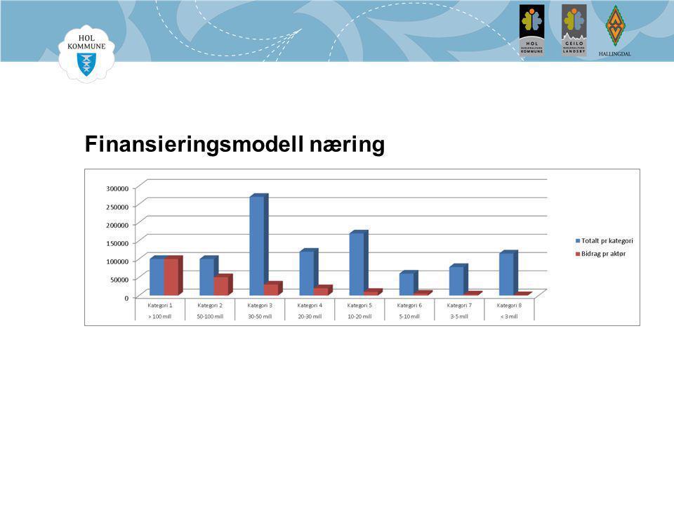 Finansieringsmodell næring