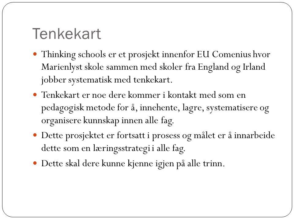 Tenkekart Thinking schools er et prosjekt innenfor EU Comenius hvor Marienlyst skole sammen med skoler fra England og Irland jobber systematisk med te