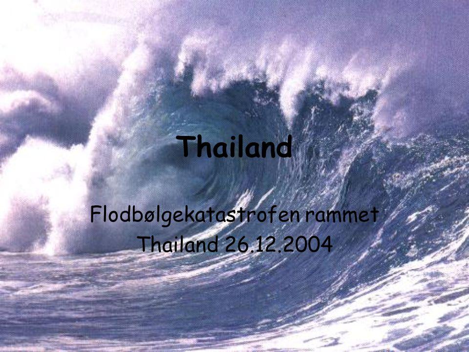 Thailand Flodbølgekatastrofen rammet Thailand 26.12.2004