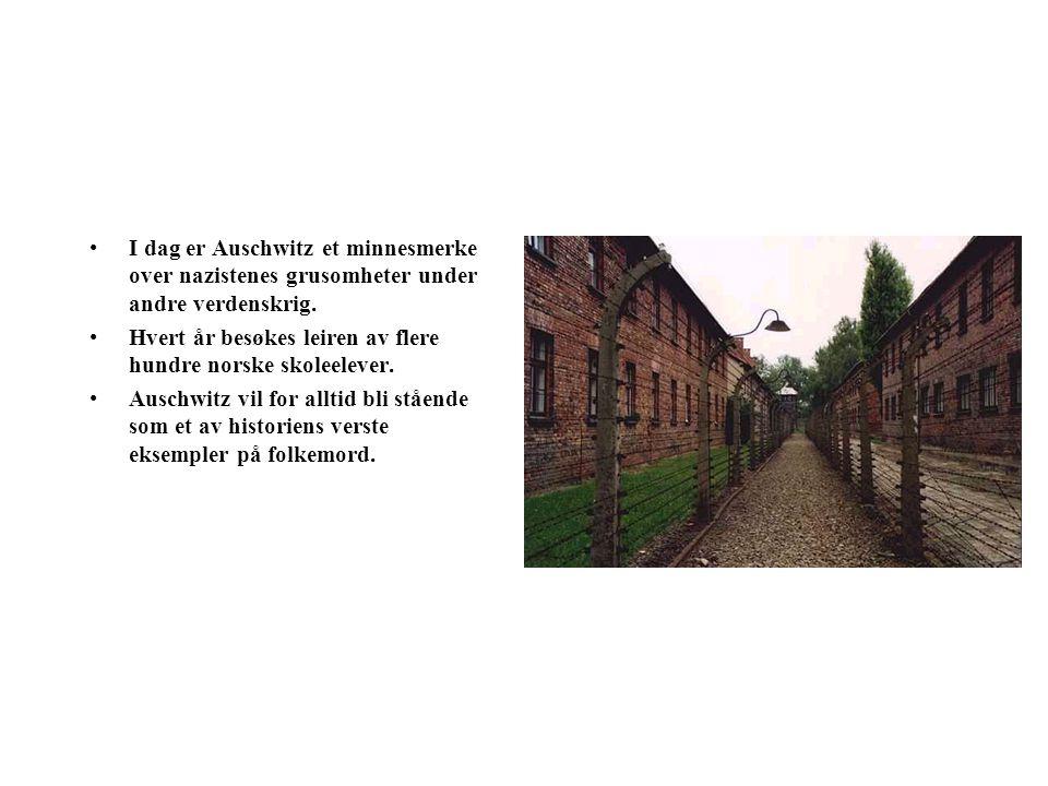 Auschwitz 60 km vest for Krakow ligger konsentrasjonsleirene Auschwitz I og Auschwitz II.