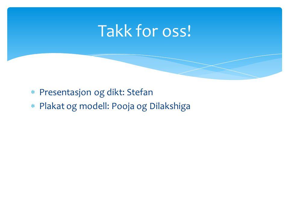  Presentasjon og dikt: Stefan  Plakat og modell: Pooja og Dilakshiga Takk for oss!