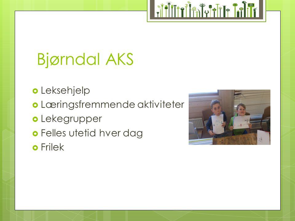 Bjørndal AKS  Leksehjelp  Læringsfremmende aktiviteter  Lekegrupper  Felles utetid hver dag  Frilek