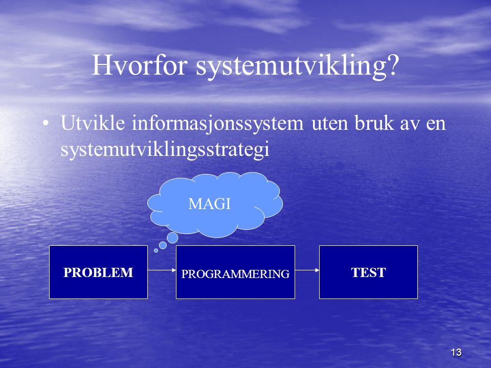 13 Hvorfor systemutvikling? Utvikle informasjonssystem uten bruk av en systemutviklingsstrategi PROBLEM PROGRAMMERING TEST MAGI