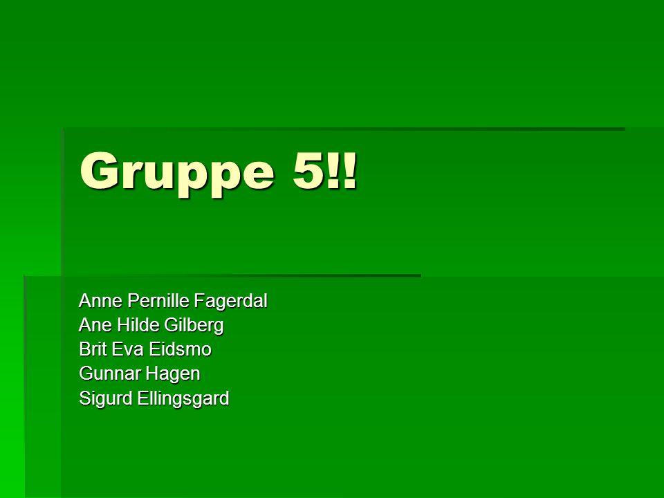 Gruppe 5!! Anne Pernille Fagerdal Ane Hilde Gilberg Brit Eva Eidsmo Gunnar Hagen Sigurd Ellingsgard