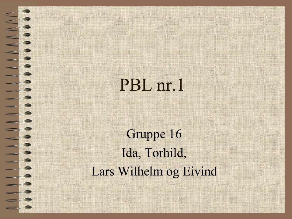 PBL nr.1 Gruppe 16 Ida, Torhild, Lars Wilhelm og Eivind