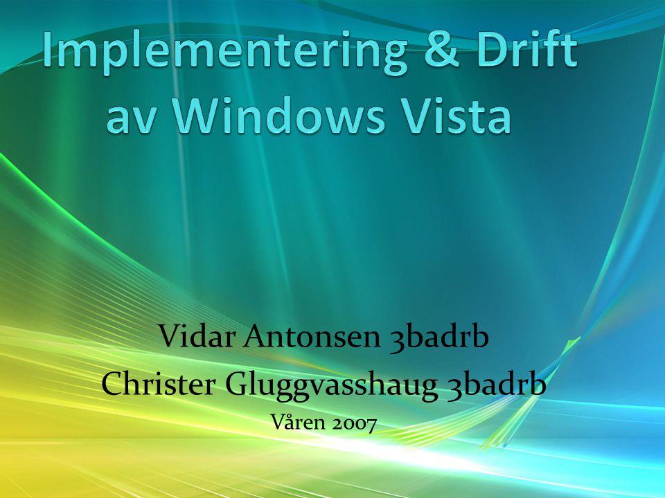 Vidar Antonsen 3badrb Christer Gluggvasshaug 3badrb Våren 2007