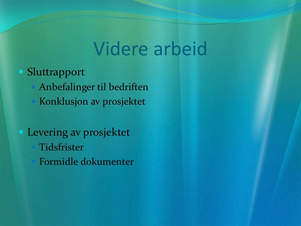 Videre arbeid Sluttrapport Anbefalinger til bedriften Konklusjon av prosjektet Levering av prosjektet Tidsfrister Formidle dokumenter