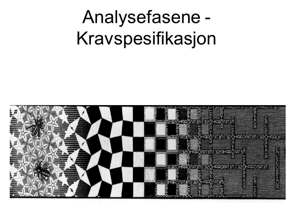 Analysefasene - Kravspesifikasjon