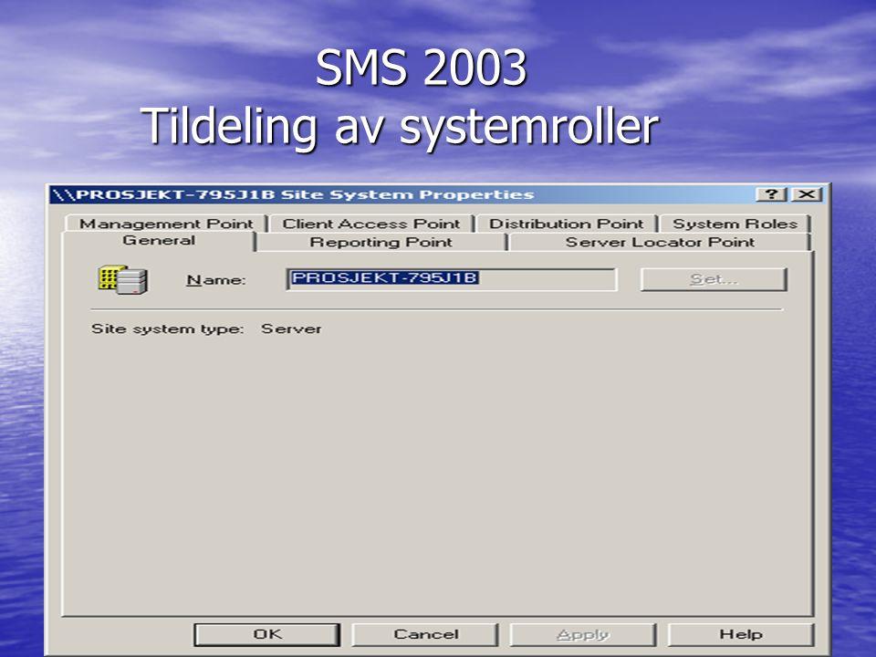 SMS 2003 Tildeling av systemroller
