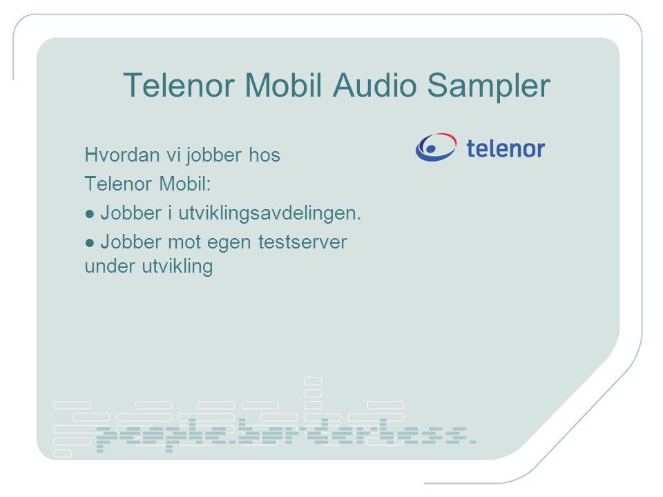 Telenor Mobil Audio Sampler Hvordan vi jobber hos Telenor Mobil: Jobber i utviklingsavdelingen.