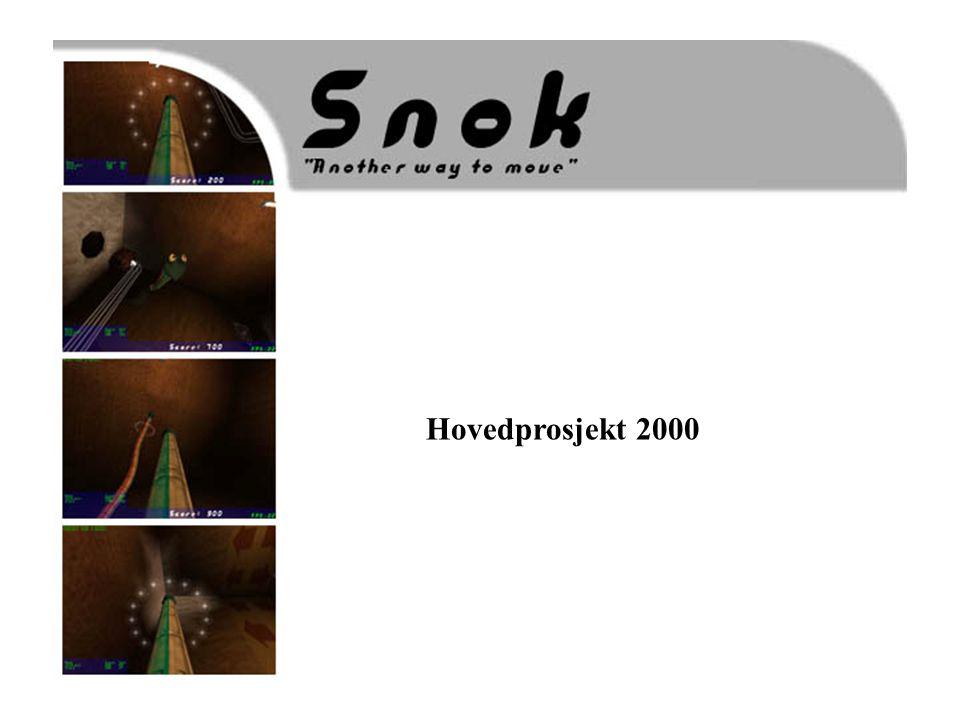 Hovedprosjekt 2000