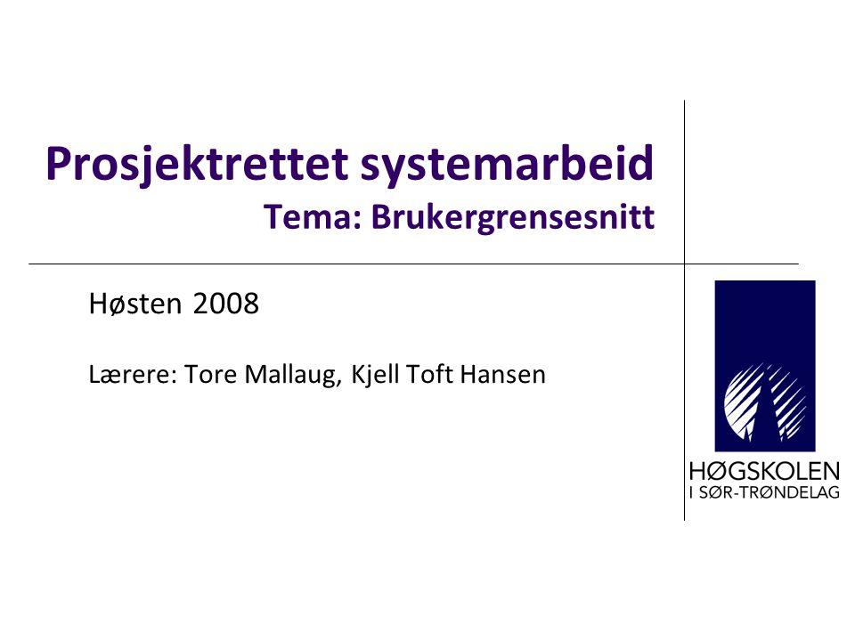 Prosjektrettet systemarbeid Tema: Brukergrensesnitt Høsten 2008 Lærere: Tore Mallaug, Kjell Toft Hansen