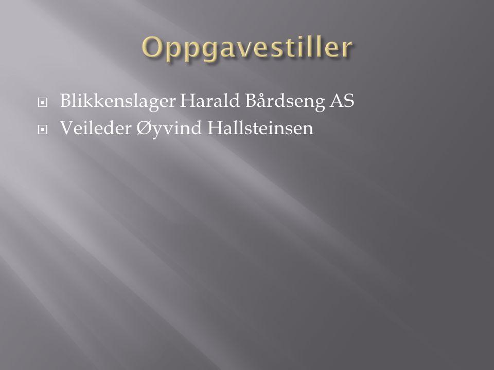  Blikkenslager Harald Bårdseng AS  Veileder Øyvind Hallsteinsen