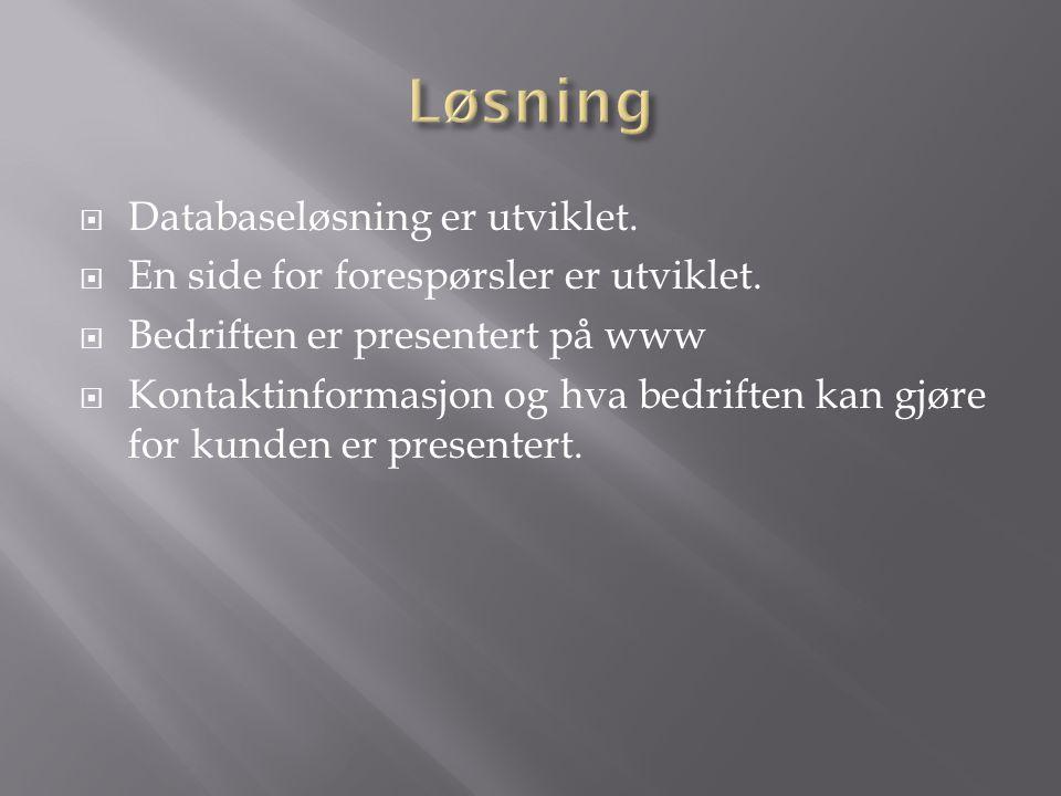  Databaseløsning er utviklet.  En side for forespørsler er utviklet.  Bedriften er presentert på www  Kontaktinformasjon og hva bedriften kan gjør