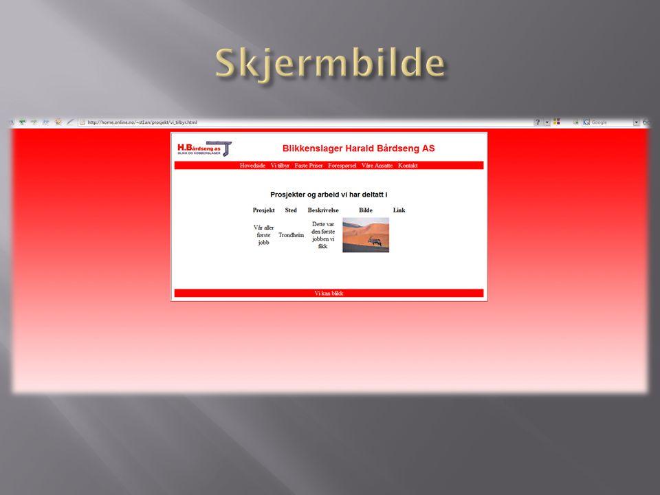  Få satt inn bilder  Få på plass webhotellet  Få ordnet databaseløsningen optimalt  Ferdigstille websiden