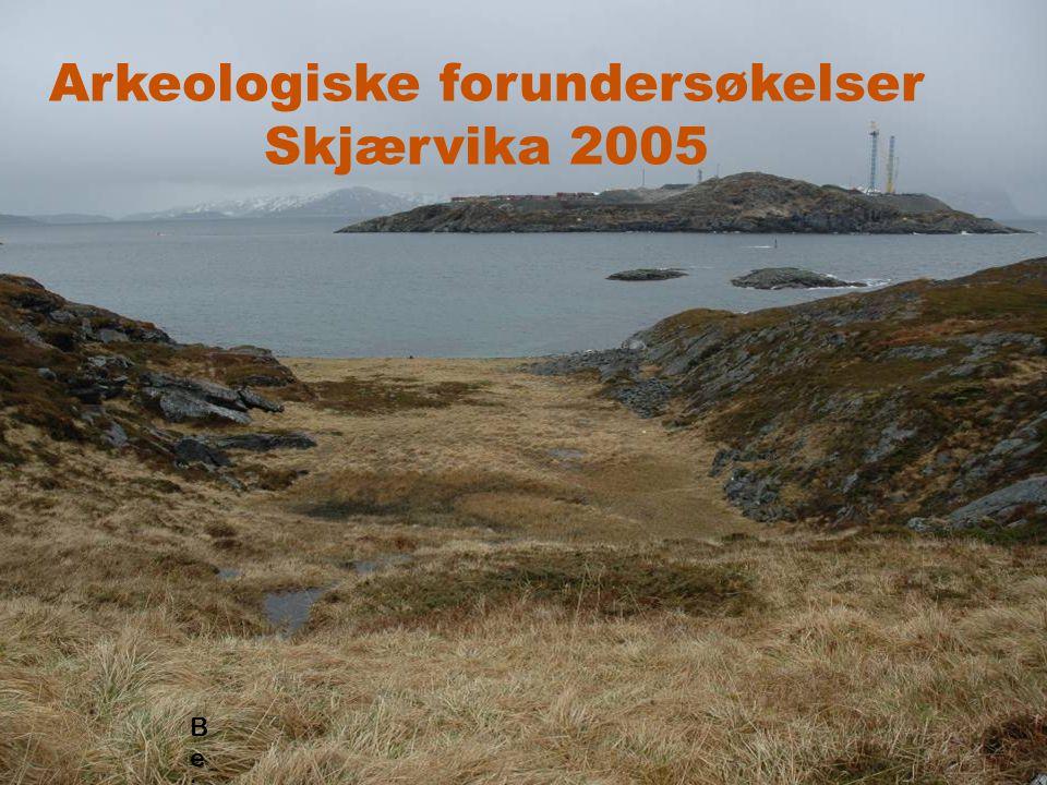 ingen sikre funn i konteksten C-14, 3000 BC Sjakt 8, Skjærvika Øvre