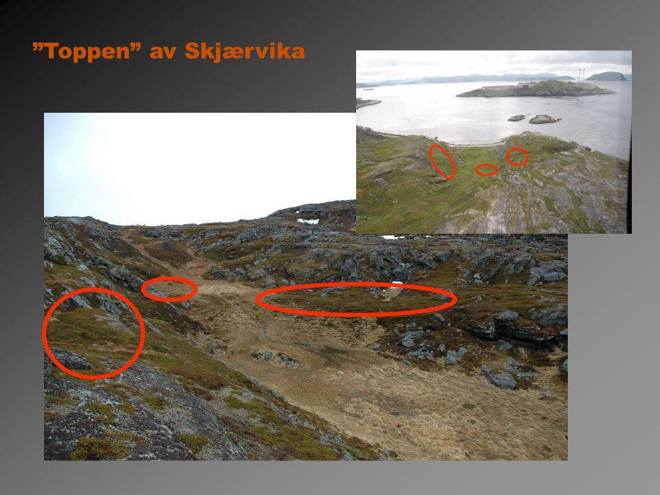 Toppen av Skjærvika