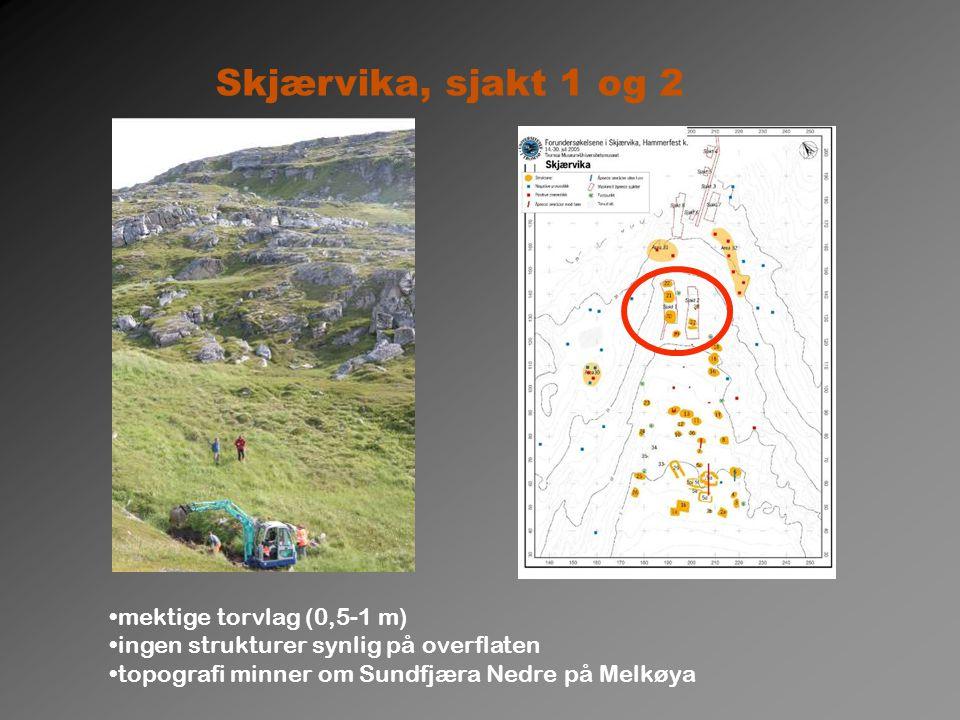 Skjærvika, sjakt 1 og 2 mektige torvlag (0,5-1 m) ingen strukturer synlig på overflaten topografi minner om Sundfjæra Nedre på Melkøya