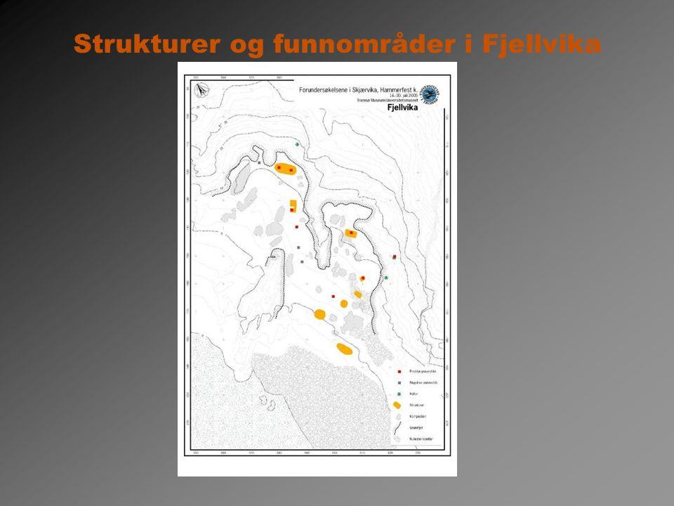 Strukturer og funnområder i Fjellvika