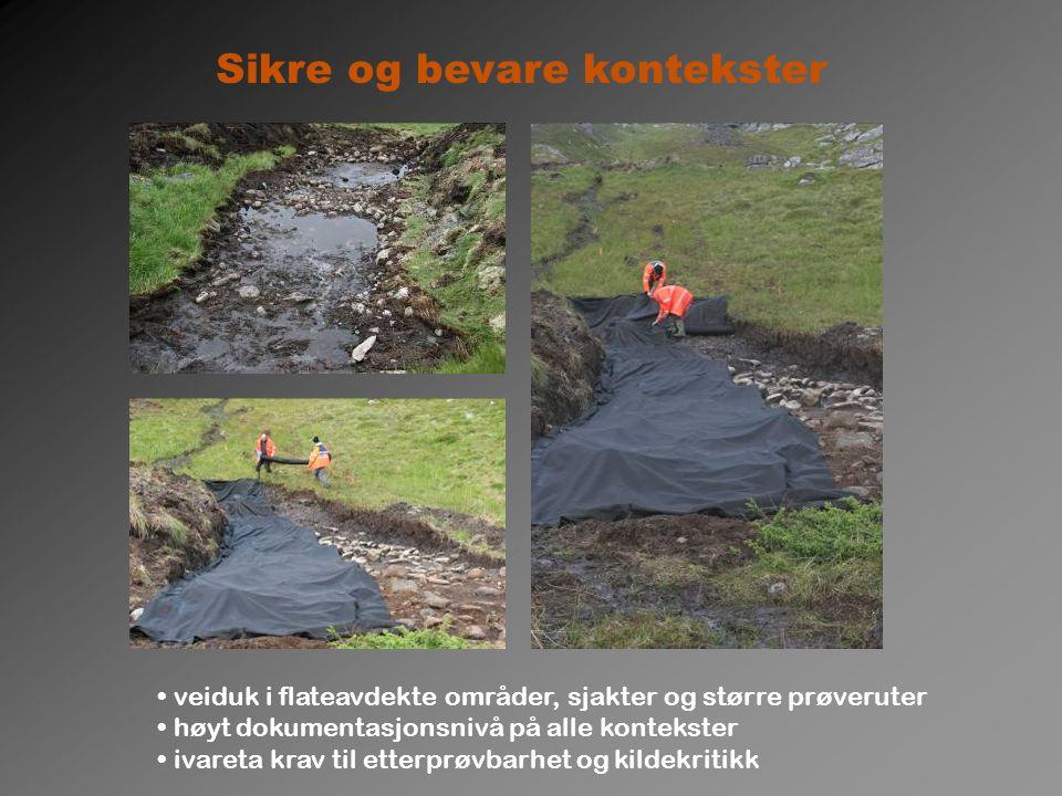 Midtre Skjærvika