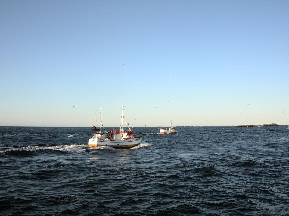 Kystsoneplanlegging  På tross av dette har Norge i løpet av 40 år utviklet en stor, verdensledende oppdrettssektor (laks/ørret), en stor olje og gass-sektor, en betydelig maritim turistindustri, en viktig fiskerisektor, osv.