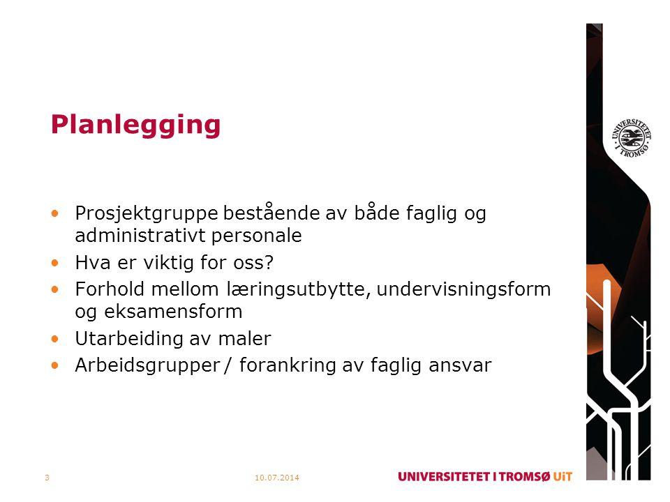 Gjennomføring 10.07.20144 Prosjektgruppe Arbeidsgrupper Institutt Utdanningsutvalget