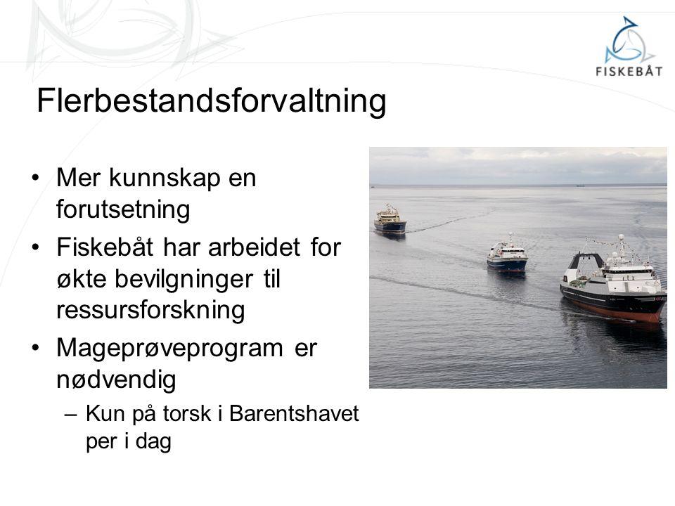 Flerbestandsforvaltning Mer kunnskap en forutsetning Fiskebåt har arbeidet for økte bevilgninger til ressursforskning Mageprøveprogram er nødvendig –Kun på torsk i Barentshavet per i dag