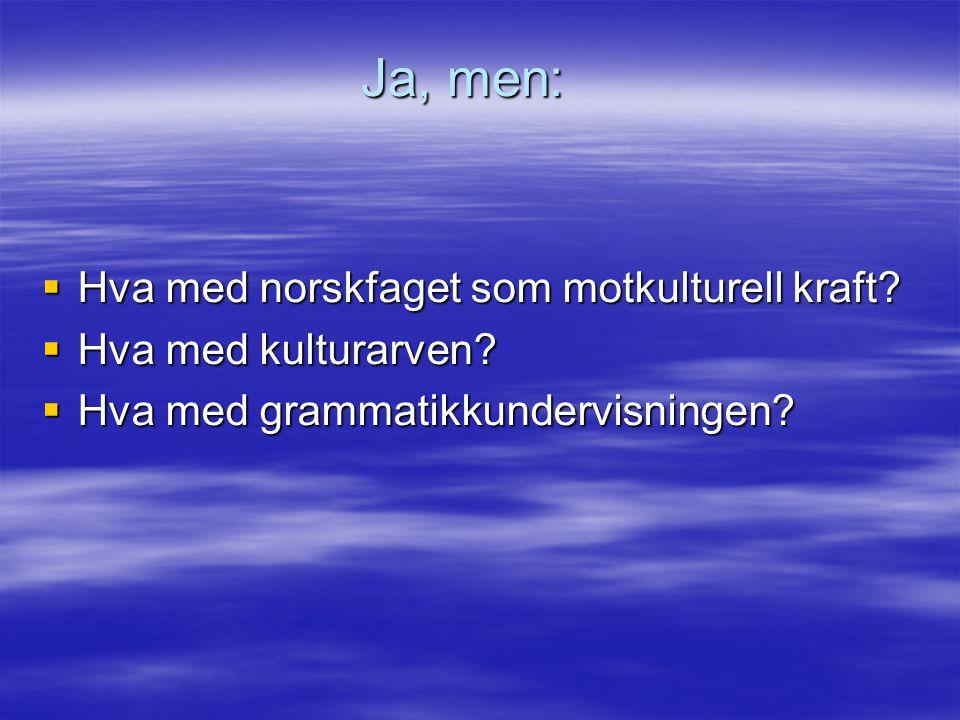 Ja, men:  Hva med norskfaget som motkulturell kraft?  Hva med kulturarven?  Hva med grammatikkundervisningen?