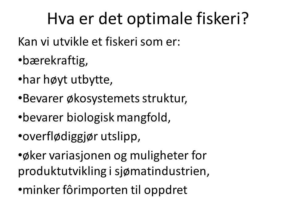 Hva er det optimale fiskeri? Kan vi utvikle et fiskeri som er: bærekraftig, har høyt utbytte, Bevarer økosystemets struktur, bevarer biologisk mangfol