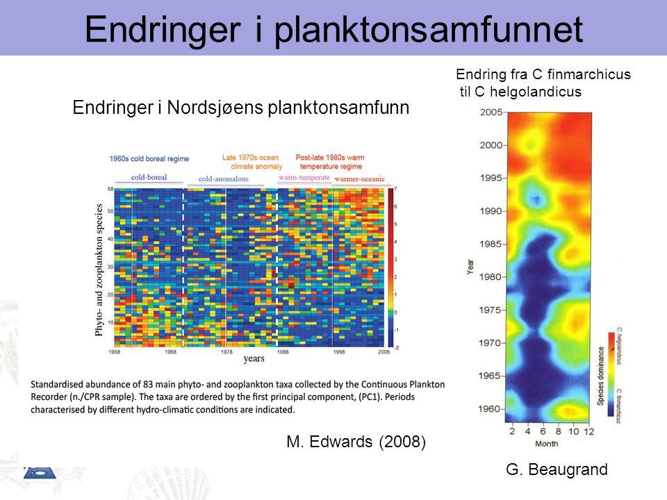 M. Edwards (2008) Endring fra C finmarchicus til C helgolandicus G. Beaugrand Endringer i planktonsamfunnet Endringer i Nordsjøens planktonsamfunn