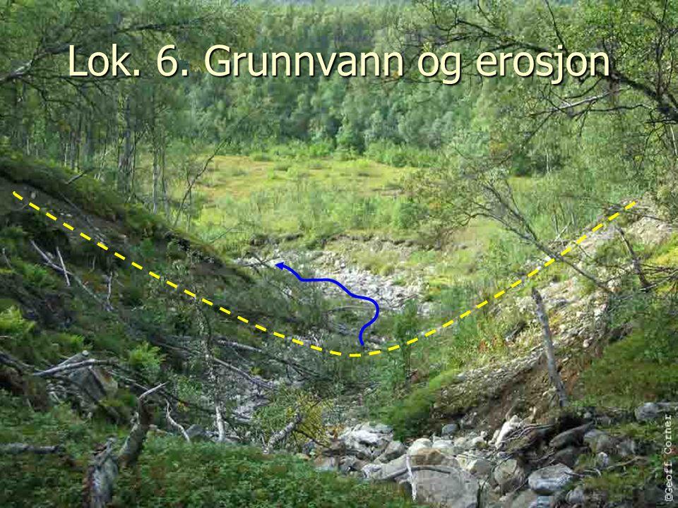 Lok. 6. Grunnvann og erosjon
