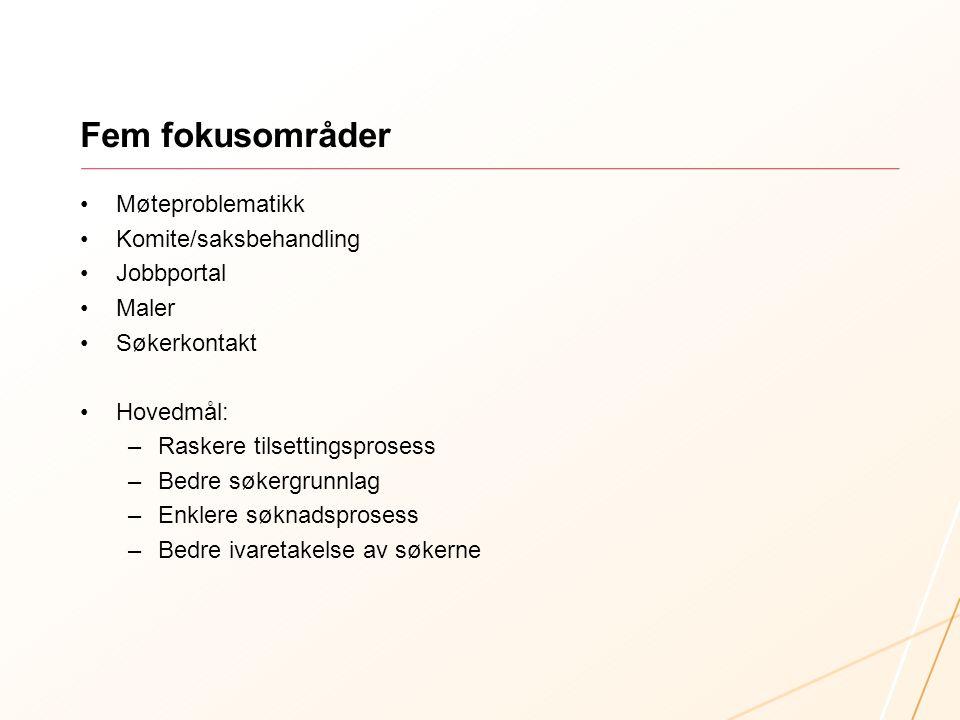 Fem fokusområder Møteproblematikk Komite/saksbehandling Jobbportal Maler Søkerkontakt Hovedmål: –Raskere tilsettingsprosess –Bedre søkergrunnlag –Enklere søknadsprosess –Bedre ivaretakelse av søkerne