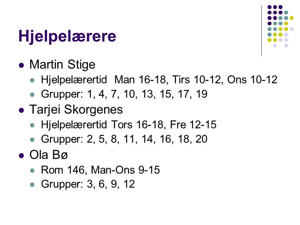 Hjelpelærere Martin Stige Hjelpelærertid Man 16-18, Tirs 10-12, Ons 10-12 Grupper: 1, 4, 7, 10, 13, 15, 17, 19 Tarjei Skorgenes Hjelpelærertid Tors 16