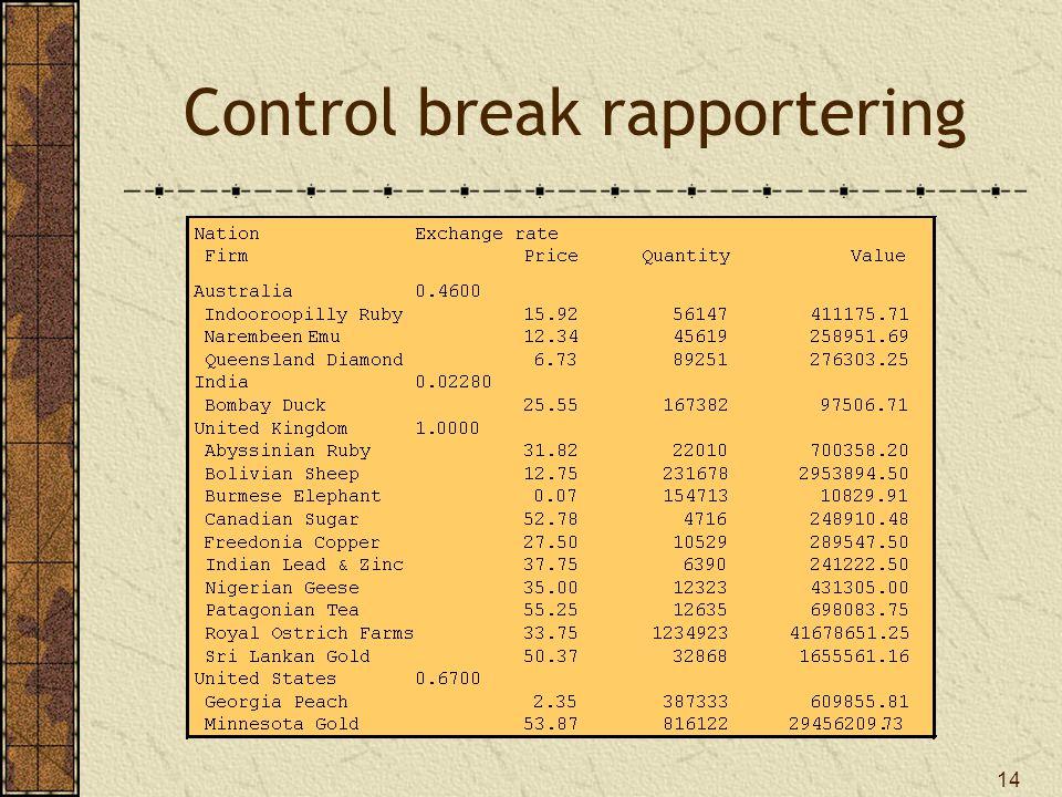 14 Control break rapportering