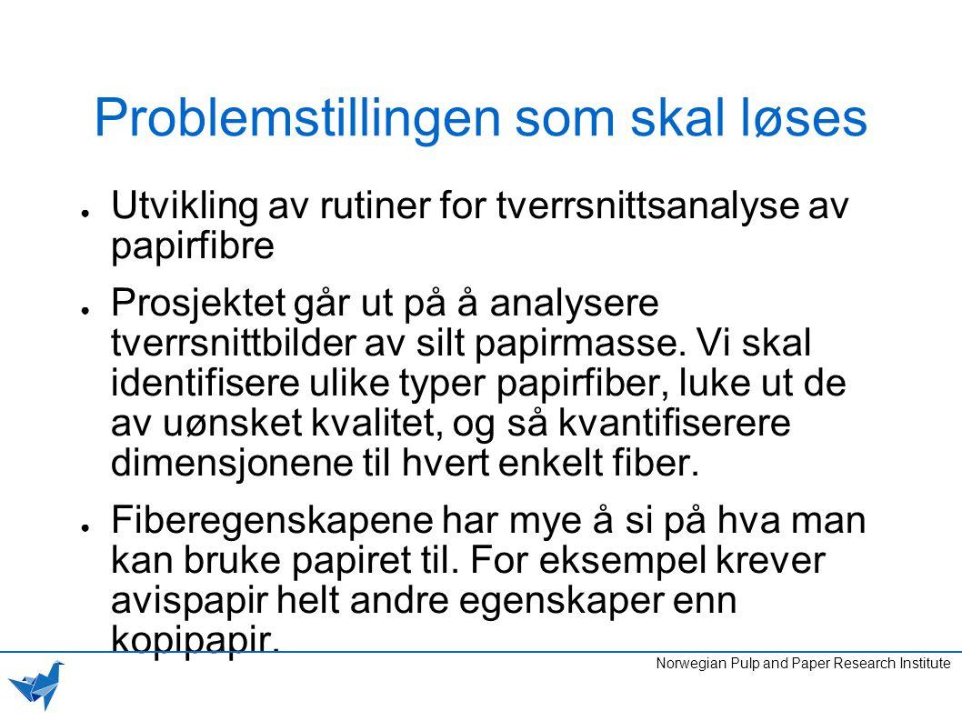 Hvorfor vi valgte denne oppgaven ● Utfordrende ● Interessant ● Muligheten til å lære masse nytt ● Tilgjengelig kompetanse ved PFI Norwegian Pulp and Paper Research Institute