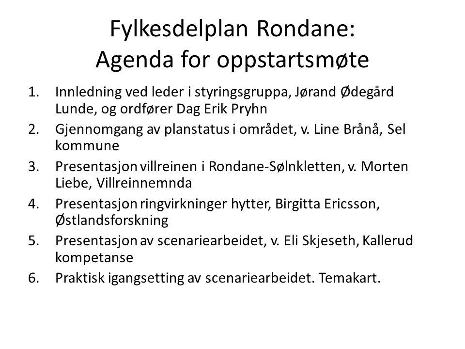 Fylkesdelplan Rondane: Agenda for oppstartsmøte 1.Innledning ved leder i styringsgruppa, Jørand Ødegård Lunde, og ordfører Dag Erik Pryhn 2.Gjennomgan
