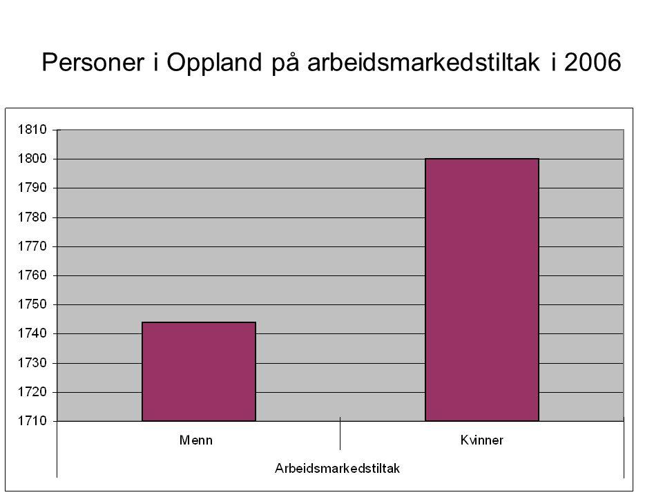 Personer i Oppland på arbeidsmarkedstiltak i 2006