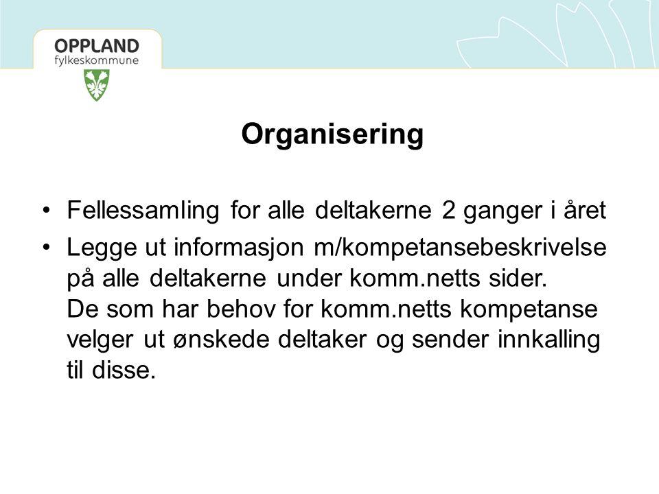 Organisering Fellessamling for alle deltakerne 2 ganger i året Legge ut informasjon m/kompetansebeskrivelse på alle deltakerne under komm.netts sider.
