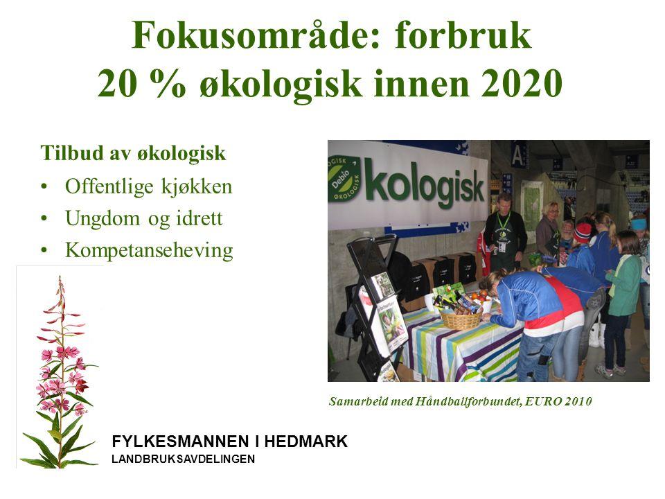 FYLKESMANNEN I HEDMARK LANDBRUKSAVDELINGEN Fokusområde: forbruk 20 % økologisk innen 2020 Tilbud av økologisk Offentlige kjøkken Ungdom og idrett Kompetanseheving Samarbeid med Håndballforbundet, EURO 2010