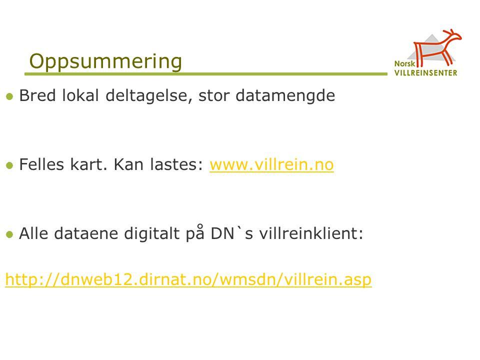 Oppsummering Bred lokal deltagelse, stor datamengde Felles kart. Kan lastes: www.villrein.nowww.villrein.no Alle dataene digitalt på DN`s villreinklie