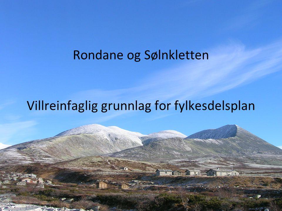 Rondane og Sølnkletten Villreinfaglig grunnlag for fylkesdelsplan