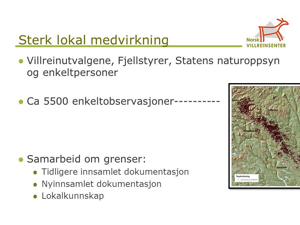 Sterk lokal medvirkning Villreinutvalgene, Fjellstyrer, Statens naturoppsyn og enkeltpersoner Ca 5500 enkeltobservasjoner---------- Samarbeid om grens