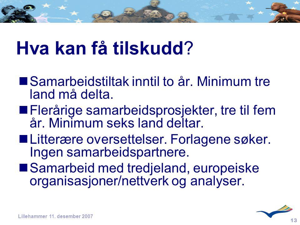 13 Lillehammer 11. desember 2007 Hva kan få tilskudd? Samarbeidstiltak inntil to år. Minimum tre land må delta. Flerårige samarbeidsprosjekter, tre ti