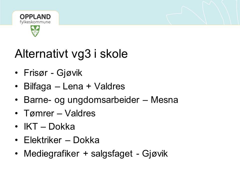 Alternativt vg3 i skole Frisør - Gjøvik Bilfaga – Lena + Valdres Barne- og ungdomsarbeider – Mesna Tømrer – Valdres IKT – Dokka Elektriker – Dokka Mediegrafiker + salgsfaget - Gjøvik