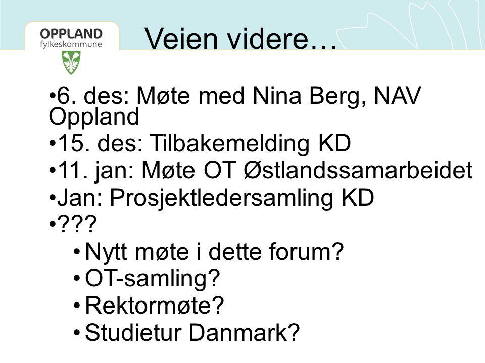 6. des: Møte med Nina Berg, NAV Oppland 15. des: Tilbakemelding KD 11.