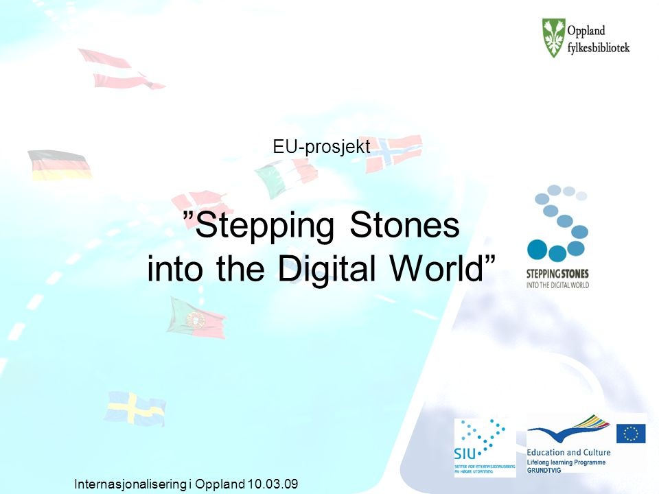 EU-prosjekt Stepping Stones into the Digital World Internasjonalisering i Oppland 10.03.09